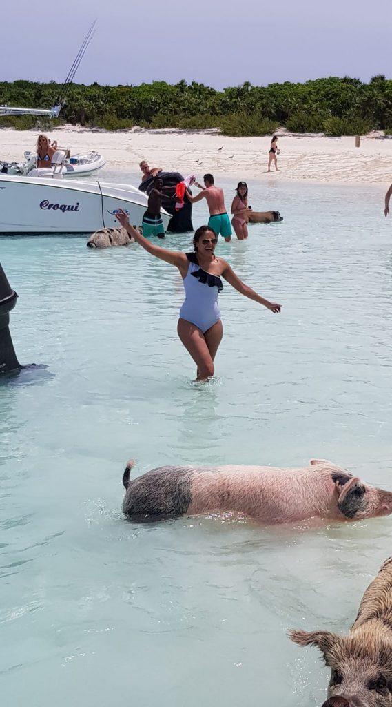 PIG BEACH BAHAMA