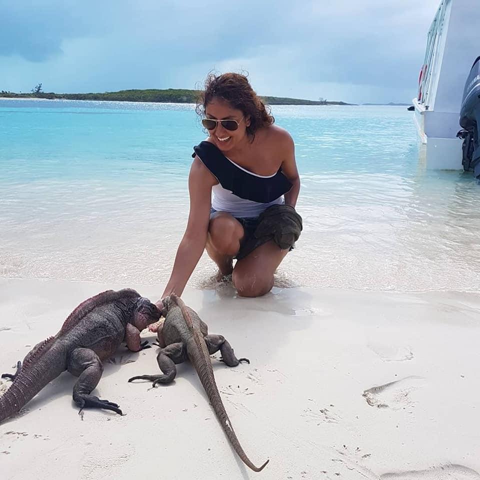 iguana feeding
